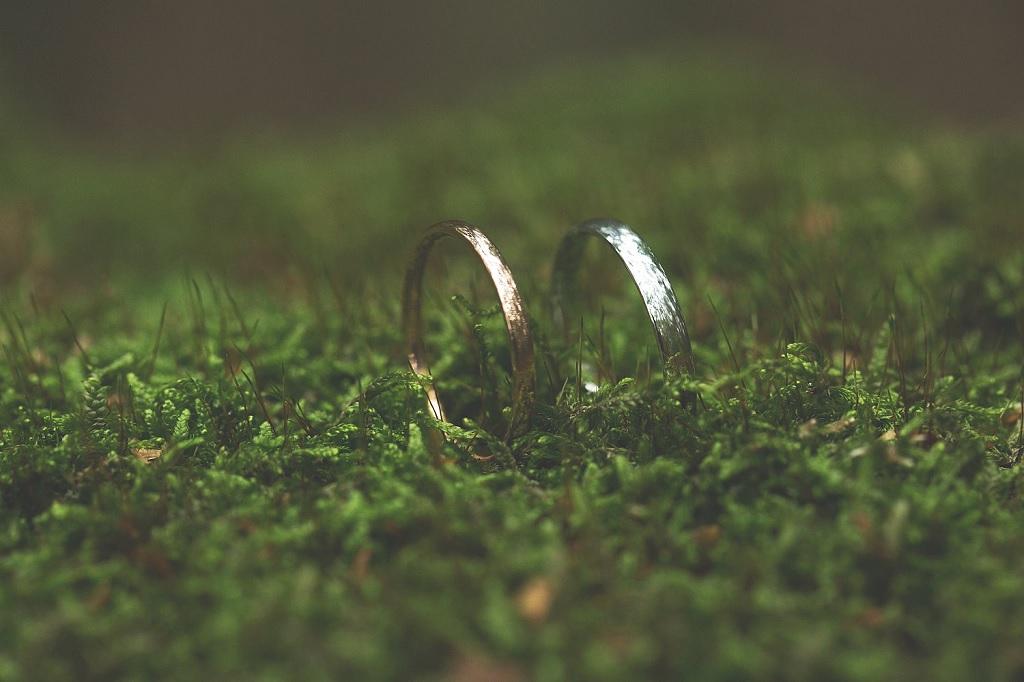 Svatba (prstýnky)